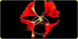Цветочные композиции из искусственных цветов