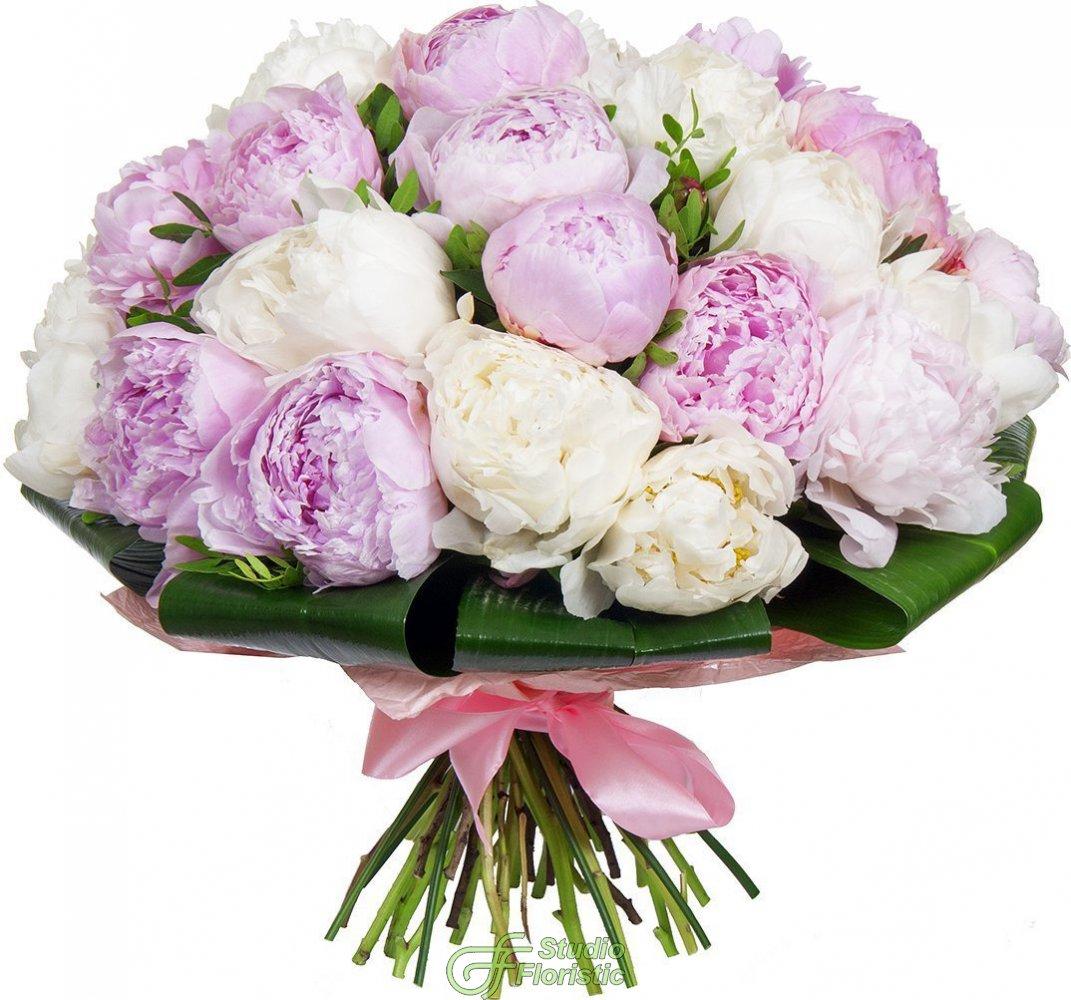 что цветы пионы открытки красивые дальнейшей работе